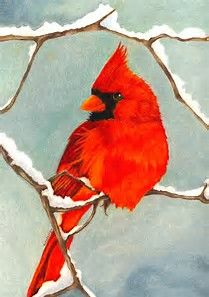 Image result for Christmas Cardinal Painting
