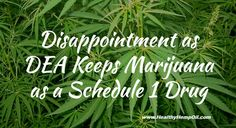 """Schedule 1 classifies as the most highly restrictive category of regulation, any substance that has """"no currently accepted medical use and a high potential for abuse."""