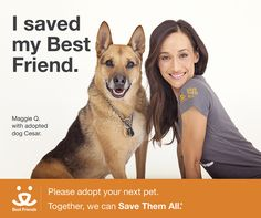 """Maggie Q may be a tough action hero in movies like """"Divergent,"""" but this star has a heart as big as her muscles when it comes to helping homeless pets. She joins fellow actress, super-mom and writer, Elisabeth Rohm, in this fall's """"Stalker"""" on CBS. Together, they are a formidable pair working alongside Best Friends to help Save Them All.  Learn more and join us to help spread the word about the 9,000 dogs and cats that are killed every day in America's shelters."""