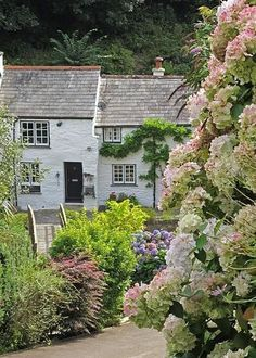 Cottages, Boscastle, Cornwall, England