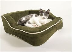 Dolce Vita Therabed Heated Pet Bed (Rectangle) - XS ** You can find more details by visiting the image link.
