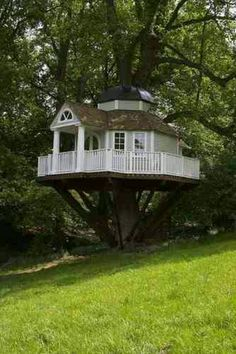 A real tree house lol too cool, I want one