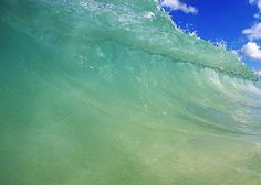 Ocean Curl