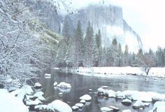Badger Pass Yosemite | Badger Pass Ski Area Yosmite National Park