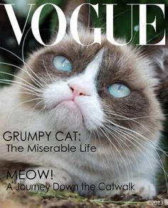 Grumpy Cat makes the cover of Vogue