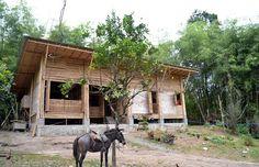 Una casa ecuatoriana de 900 bambús y 8 troncos de árboles de laurel
