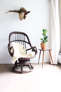 Rotan seventies chair with sixties sidetable / planttable and ficus on top. Taxidermy pheasant   Animal, bird, 60s, vintage, lounge chair, boho, bohemian