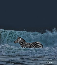 'Let the ocean worry about being blue.' by Karen _ 12:31 am 🖤 instagram.com/karencantuq #wearemadeofstoriesbyk #surreal #surrealism #manipulation #nature #zebra #ocean