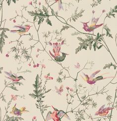 Buy Cole & Son 100/14071 Hummingbirds Wallpaper | Archive Anthology | Fashion Interiors