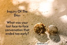 What was your last face-to-face conversation that ended too early? http://www.iotd365.com/blog/2016/5/12/what-was-your-last-face-to-face-conversation-that-ended-too-early