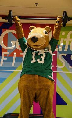 Gainer gettin' in shape Saskatchewan Roughriders, Football Team, Savannah Chat, Green Colors, Ronald Mcdonald, Shape, Fictional Characters, Football Squads, Colors Of Green