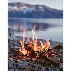 Campfire by the lake? Yes please!