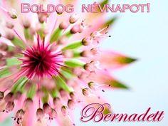 boldog névnapot bernadett 118 best Névnaptár images on Pinterest | Name day, Names and Saint  boldog névnapot bernadett