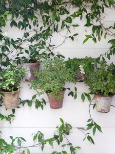 Hang pots on the wall!