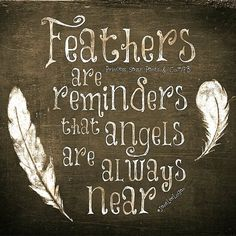 Angels... When you find a feather say a little prayer of thanks... LLC