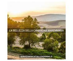 [MAREMMA] La bellezza unica della campagna Maremmana: paesaggi diversi che ti fanno sognare.