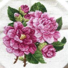 Peony Cross Stitch | Craftsy