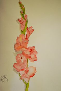 Gladiolus is one of the most prettiest flowers according to me. I was inspired to draw it because of its  beauty and  elegance. It radiates peace and leaves a soothing effect! Leaving me happy! :)