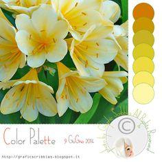 Non mi resta che provare con Twitter - Color Palette of 9 Giugno 2014 http://graficscribbles.blogspot.it/2014/06/Clivia-Palette-Colori-Twitter-giallo.html