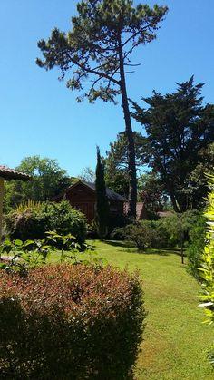 Tranqui cucu. Villa Gesell. Argentina