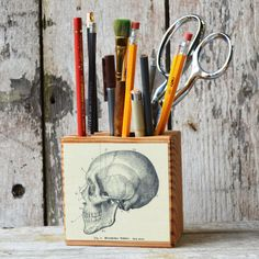 Skull Desk Caddy – The Colossal Shop
