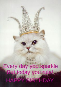 Sparkle Cat birthday card