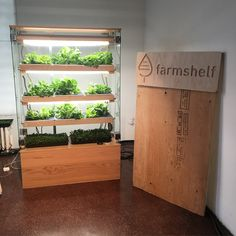 Farmshelf creating a way for individuals to grow their own food where they live, work and commune. que crecen en interiores Home Hydroponics, Hydroponic Farming, Hydroponic Growing, Hydroponics System, Hydroponic Equipment, Indoor Farming, Indoor Vegetable Gardening, Urban Gardening, Aquaponique Diy