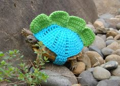 Stegosaurus tortoise cozy  made to order in any by MossyTortoise