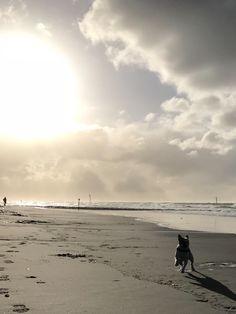 Nordstrand Norderney