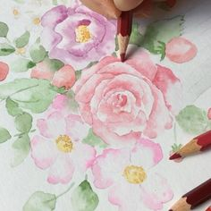 Process video of watercolor rose and flowers. Work in progress. Easy watercolor for beginners. Watercolor Paintings For Beginners, Easy Watercolor, Watercolor Techniques, Art Techniques, Watercolor Flowers, Water Colors, Watercolor Illustration, Backgrounds, Autumn