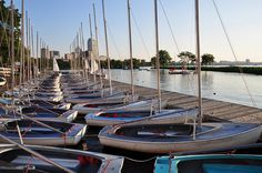 Want to dip into The Charles River? Take a community boating class and enjoy great views of Boston