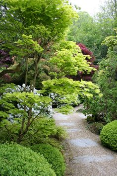 Bonsai & Japanese Garden, Cornwall, UK