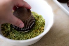 Edible moss....graham crackers and food coloring