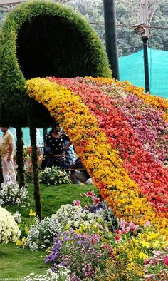 Republic Day #flower Show, Lal Bagh Botanical #garden, Bangalore, India. #art #India