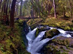 Sol Duc Falls, Olympic National Park | 10 Best Summer Campgrounds in Olympic National Park