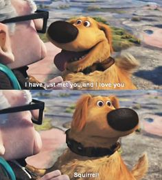 """Dug from the movie Up. """"Squirrel!!!"""" :D"""