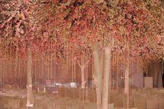 Beautiful Wedding trees