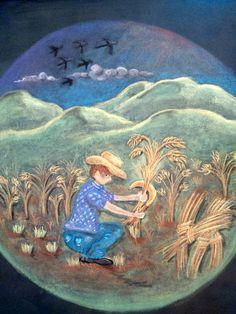 É época de arar a terra e semear!