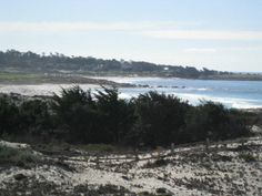 1365 Pico Av, Pacific Grove, CA 93950 — A diamond in the rough!  Sited on the sand dunes of world famous Asilomar Beach, this 3 bedroom/3 bath beach house is just waiting to have its rough edges smoothed to bring back its sparkle. There are incredible white water views from almost every room. This is a special property and location ready for its transformation. Conceptual plans are available for viewing.