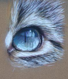 49 Ideas For Oil Pastel Art Ideas Drawings Colored Pencils Pastel Artwork, Oil Pastel Art, Pastel Drawing, Cat Drawing, Painting & Drawing, Pastel Paintings, Pencil Painting, Oil Pastels, Animal Paintings