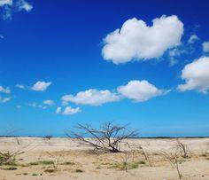 In the desert #cabodelavela #colombia #solitarysociety #travelcom #beautifulskies #tumbleweed