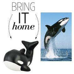 """""""Bring It Home: Orca Whale Bookend"""" by polyvore-editorial ❤ liked on Polyvore featuring interior, interiors, interior design, home, home decor, interior decorating, Zuny and bringithome"""