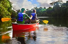 Up for adventure travel? Explore Belize's Sittee River with Hamanasi - You'll find it teeming with life in a variety of habitats from dense jungle to coastal mangroves. http://www.hamanasi.com/belize-vacation/jungle-river-tour/#utm_sguid=134135,737e0a5f-927c-75b2-549b-259b1f864fba