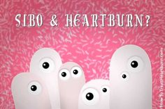 SIBO can cause heartburn, acid reflux and GERD when the small intestine overgrows with unhealthy bacteria. SIBO is treatable and preventable. How To Treat Heartburn, What Is Heartburn, Acid Indigestion, Heartburn Symptoms, Reflux Symptoms, Acid Reflux Relief, Acid Reflux Remedies, Signs Of Acid Reflux, Acid Reflux Medicine