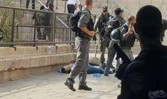 الاحتلال الاسرائيلي يطلق النار على فتاة عند…: أطلقت قوات الاحتلال الإسرائيلي، مساء اليوم الثلاثاء، النار على فتاة قرب حاجز قلنديا شمال…