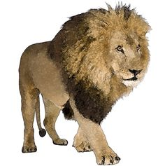 clipart african animals | Wild Animal Clip Art