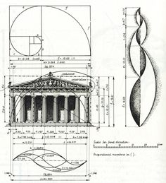 Geometry of The Golden Ratio in architecture, art, and nature. #Fibonacci