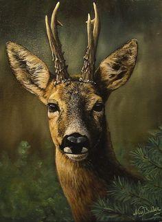 "Evening hut – ""Evening hut"" mallards – 18 x 24 ""- # evening hat … – Hobby Sports Wildlife Paintings, Wildlife Art, Animal Paintings, Animal Drawings, Whitetail Deer Pictures, Deer Photos, Corzo Animal, Chien Springer, Deer Photography"