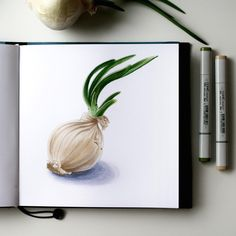 Ogres are like onions. Onions have layers.