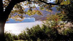 Perito Moreno - El Calafate, Santa Cruz